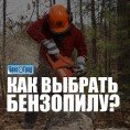 Как выбрать бензопилу?